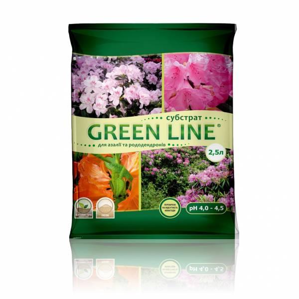 """""""Green Line"""" для азалий и рододендронов"""